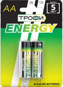 ENERGY AA 2x